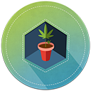 How to grow weed chapter 2