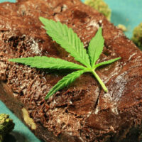 How to Make Pot Brownies: World's Best Weed Brownie Recipe