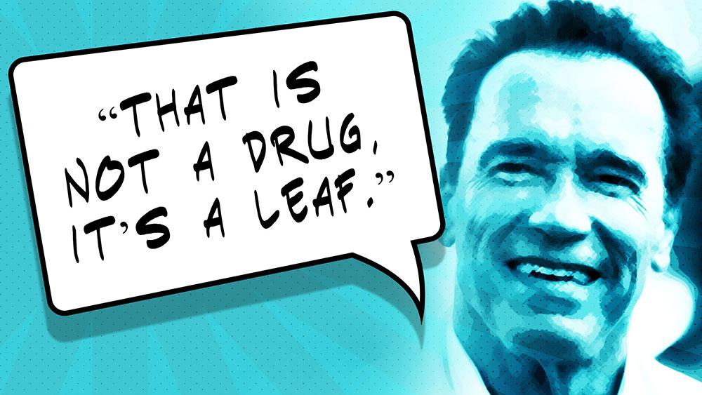 Arnold Schwarzenegger marijuana quotes