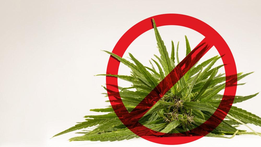 ban on pot