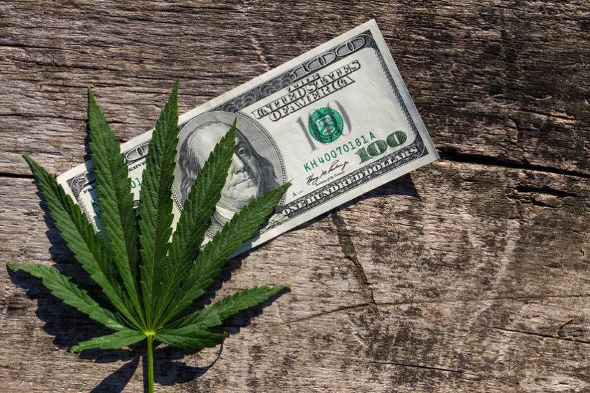 colorado trading weed
