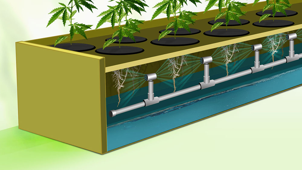 Aeroponics illustration