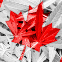 Canada's Legal Cannabis Could Be Worth Up To $4.2 Billion Annually