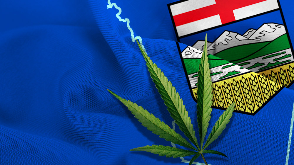Alberta Unveils Legal Cannabis Framework, Minimum Age Determined
