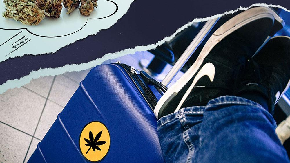 Weed luggage