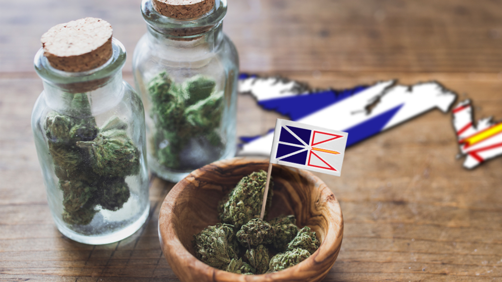 Canopy Growth signs deal with another provincial government