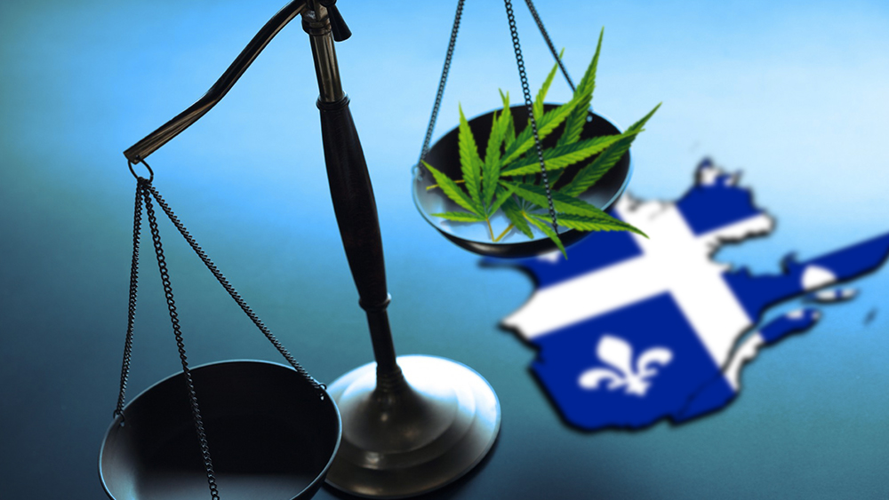 Quebec recreational marijuana market will be 144 tons annually