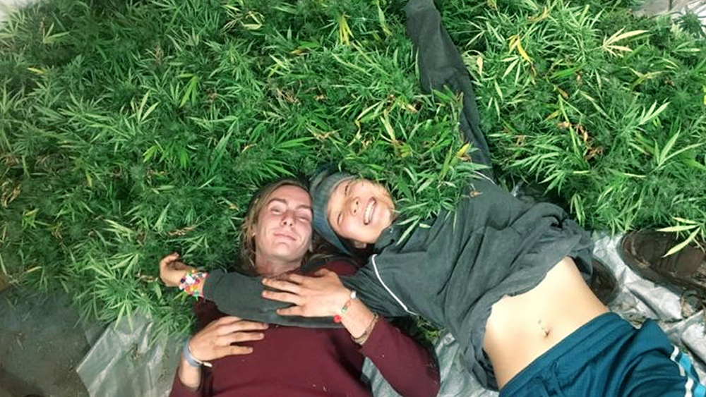 laying on weed