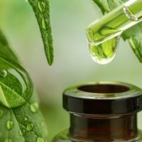 The legal status of CBD oil needs to be the same for all Americans, not by state