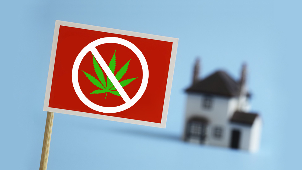 Ontario landlords want to ban smoking cannabis on their property