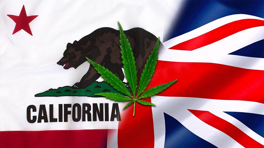 california brexit