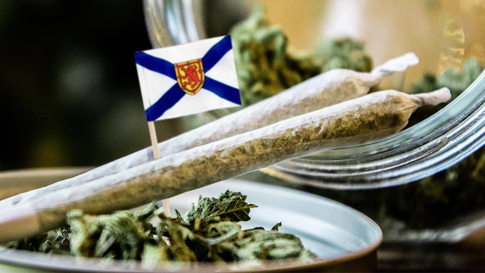 Nova scotia cannabis