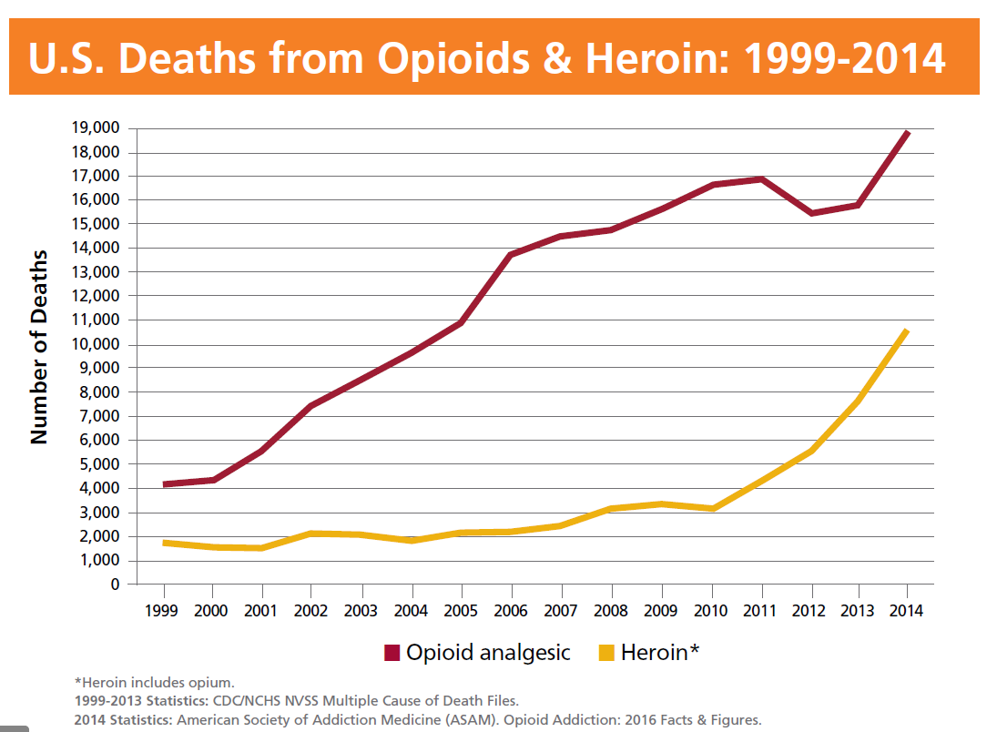 opioids and heroin deaths