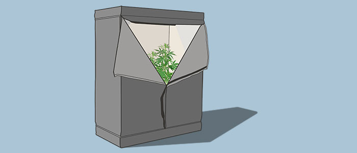 Weed growing tent