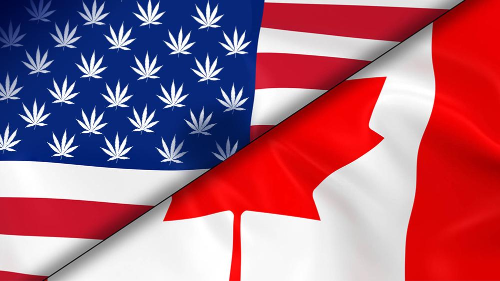 US canada cannabis