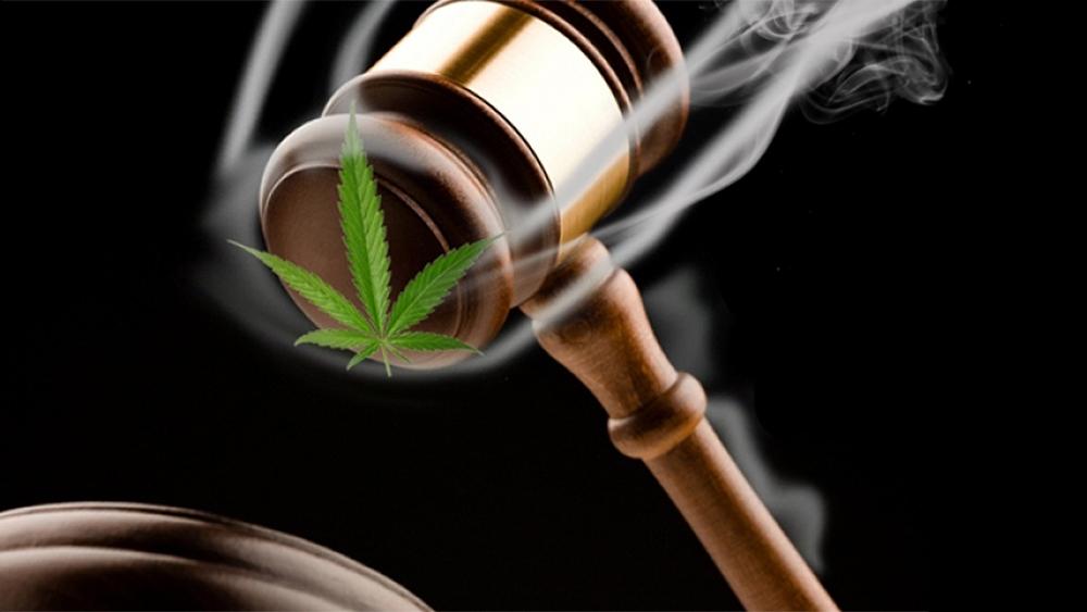 Cannabis plan ontario