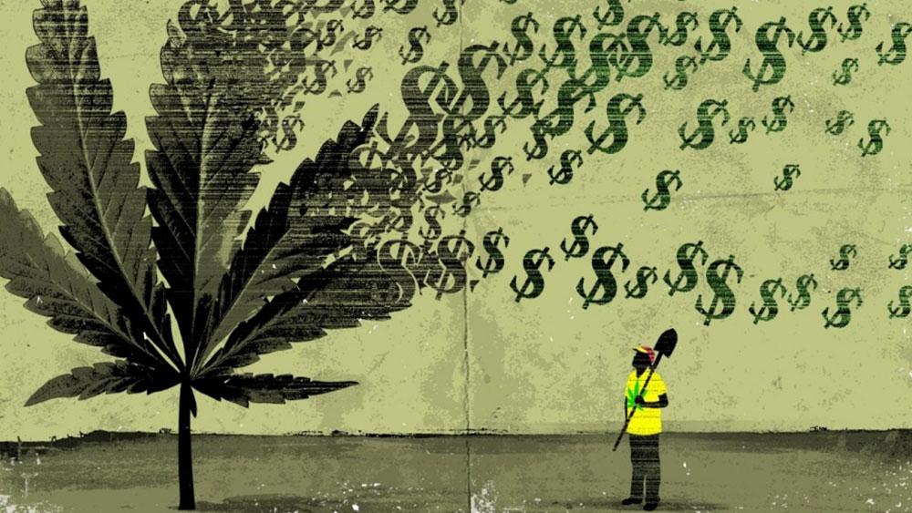 cannabis jobs canada