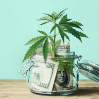 Hydropothecary signs a 5-year, $1 billion supply deal with Quebec