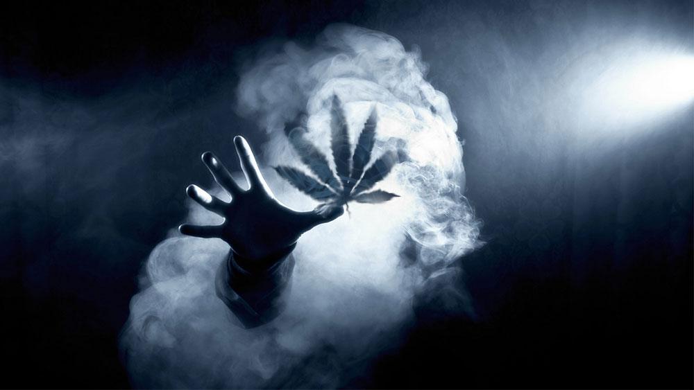 Marijuana tolerance