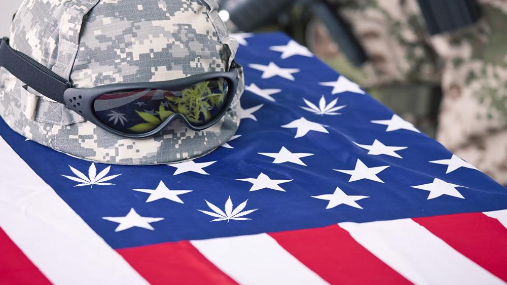 weed flag US