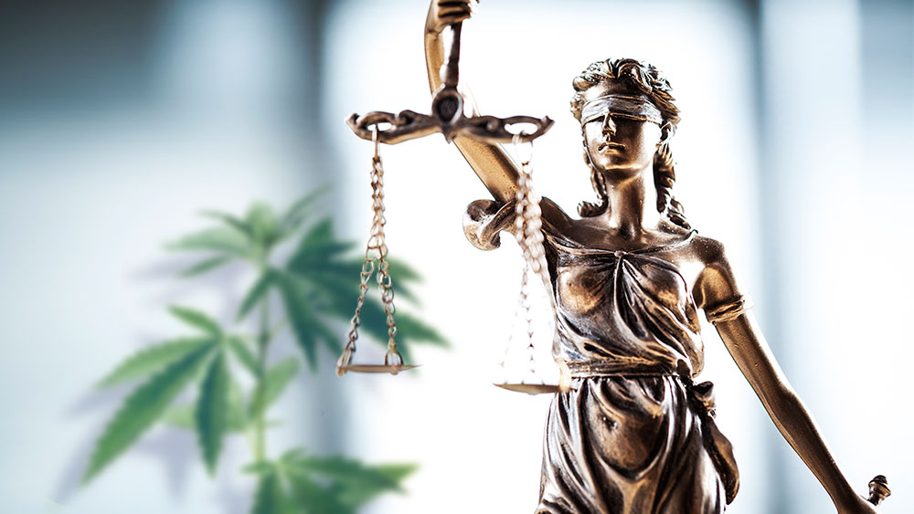 US judges marijuana