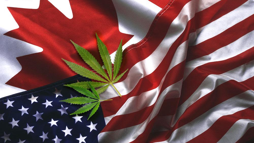 canada united states cannabis market