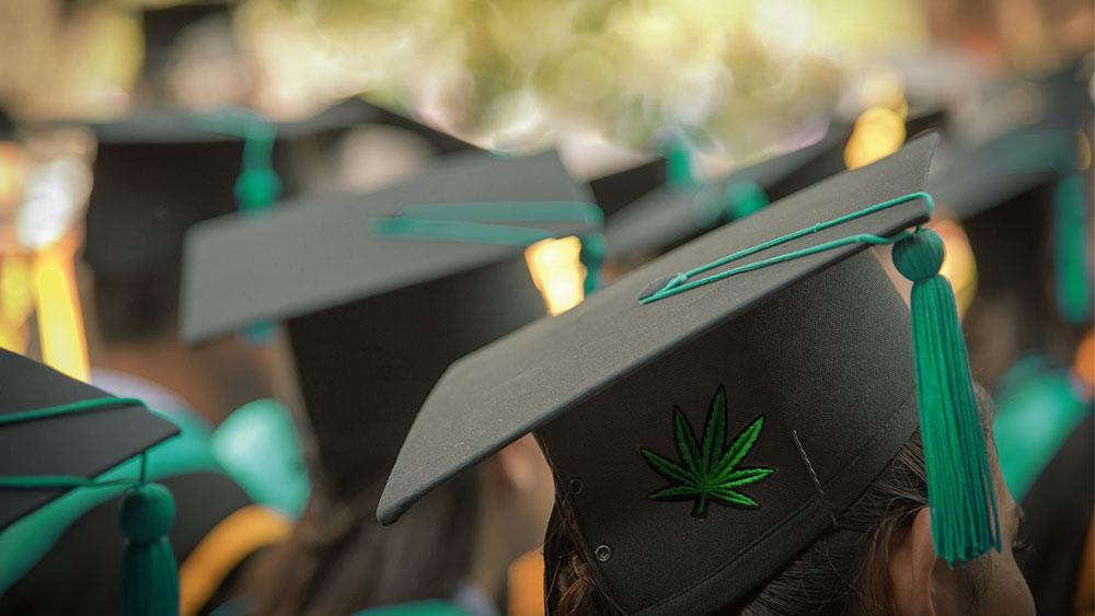 penn state university weed