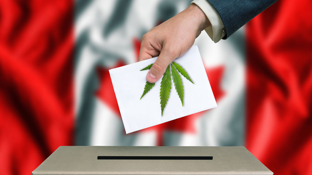 PCs won the election — what does this mean for cannabis in Ontario?