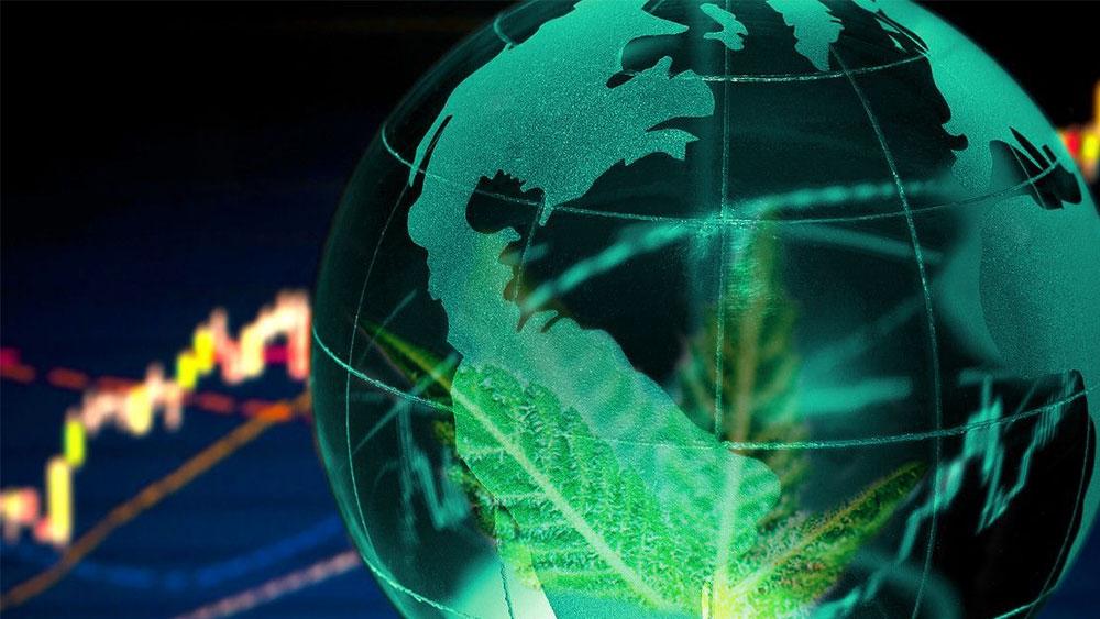 canada shortage cannabis