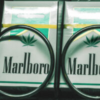 Why licensed producers should learn branding from tobacco companies
