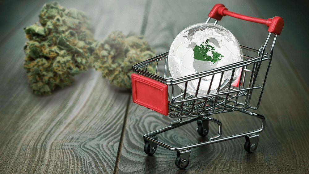 shoppers drug mart cannabis