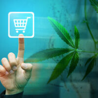 Where to buy legal cannabis in Canada online: List of all websites