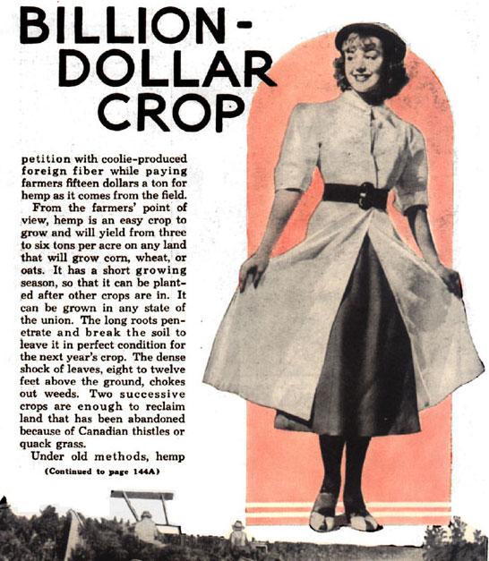 billion dollar crop