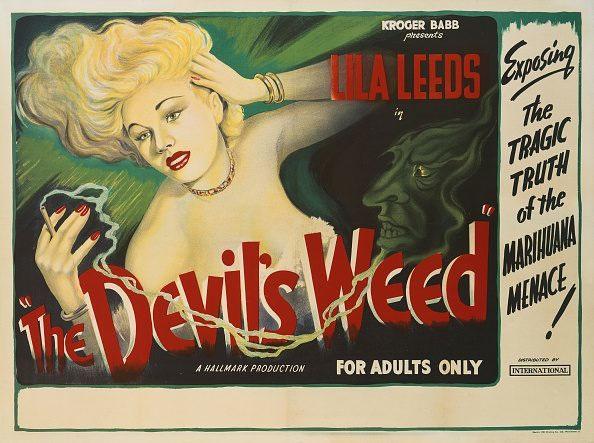 devil's weed