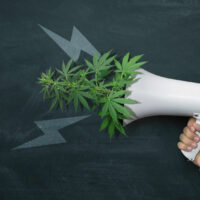Marijuana legalization in the US: A major change is in the making