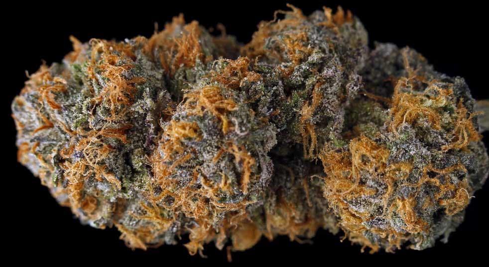 Marijuana for Insomnia: 7 Best Strains for Deeper Sleep