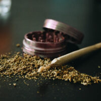 How to Grind Weed Without a Grinder (4 Alternatives)