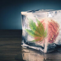 How to Deal with Memory Loss and Other Negative Effects of Cannabis