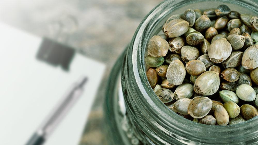 micro growers seed sales