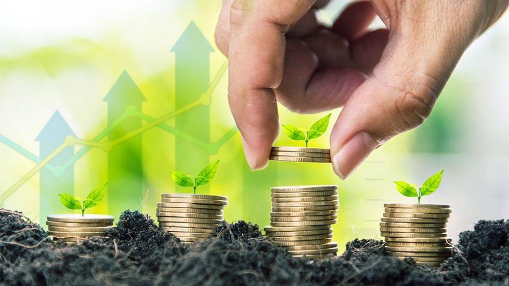 aurora cannabis makes investments