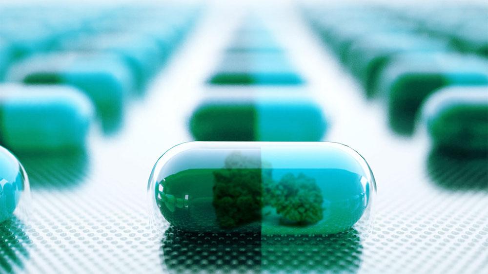 terpenes inflammation weed capsule