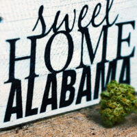 Medical marijuana legalization bill  introduced in Alabama