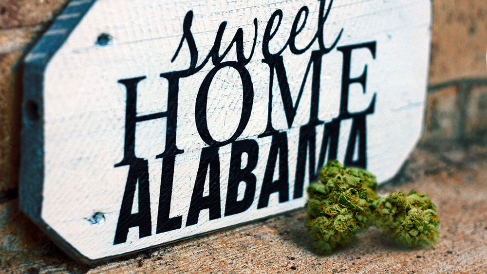 alabama marijuana