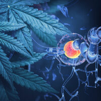 How Good Is Cannabis for Multiple Sclerosis (MS) Spasticity?