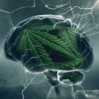 Does Cannabis Treat Anxiety or Increase It? An In-Depth Look
