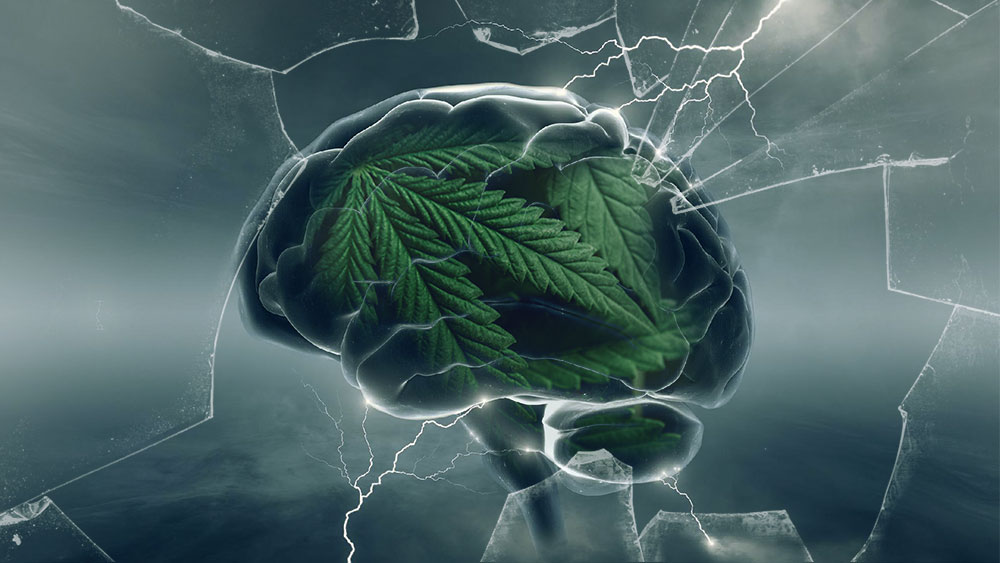 does cannabis treat anxiety