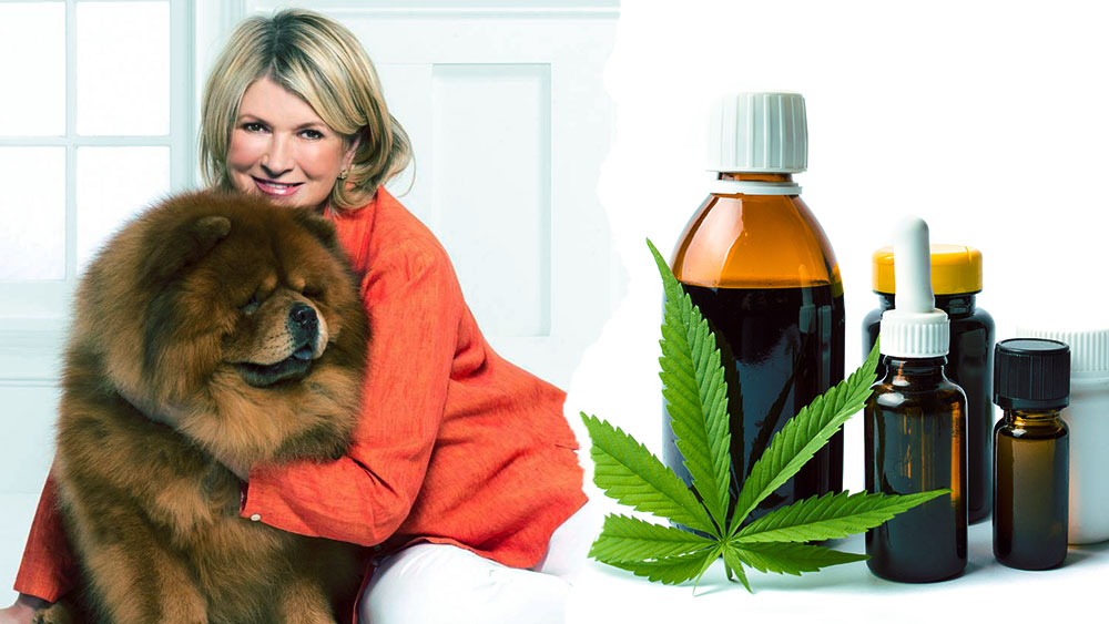 Martha stewart pet cbd