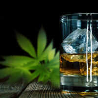 How Do Cannabis and Alcohol Mix? Studies Show It Can Get Dangerous