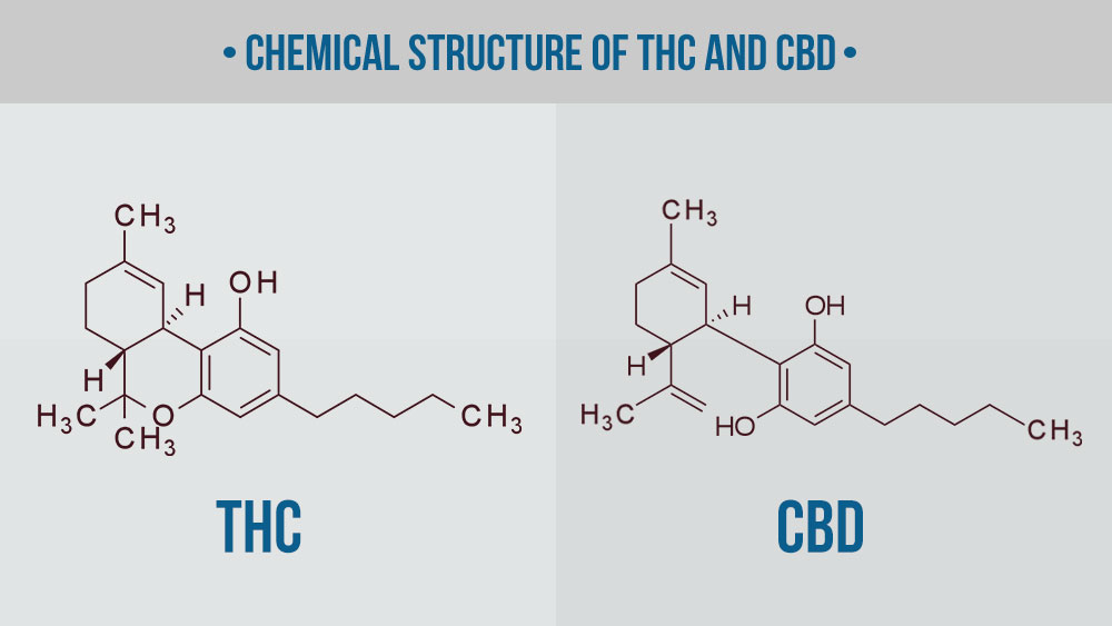 chemical structure of thc and cbd