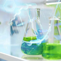Alberta cannabis producer announces huge research partnership with Harvard
